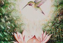 fiori di loto/ namaste