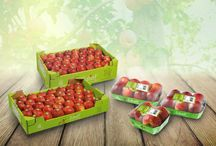 Nos créations >>> PACKAGING