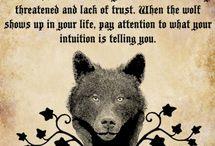 Wolf's Nature