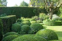 Quay Garden