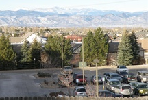 OMEGA Cir Littleton, CO 80124 / Wow, what a view! From the west facing windows you see the front range and the city. Move in ready with new carpet and paint. Light and open. Mature landscape. Solar assist to heating.