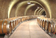 Amador Wineries / by World Wine Safaris