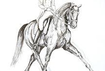 Dressage / Horse art.