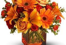 Fall Flowers We Love