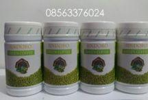 Green Coffee Bean Asli Sindoro