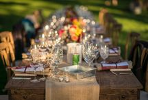 Napa Valley Harvest 2016 / Harvest is always a great time to visit Napa Valley and The Hess Collection.  And of course, if you are a photographer, the images are stunning.