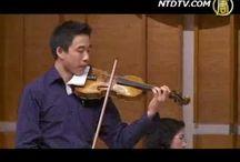violinistcorinleeplayeddebubesaved