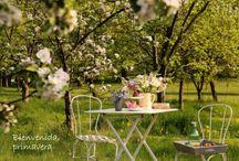Spring (primavera)