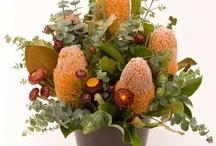 Australian Floral Arrangements