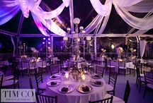 Wedding Lights Tulle
