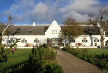 Steenberg, South Africa / by HoneyTrek