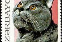 Kissa stamps