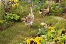 I ❤️ goose