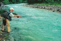 Fly-fishing in Slovenia