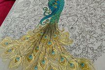 Peacock colouring