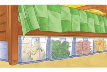 Vegetable harvesting and storage