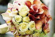 Biedermeier Bouquet / by Kari Young Floral Designs