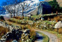 Dreaming of Ireland