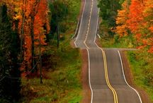 autumn roads, forests, nature
