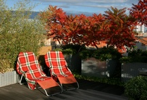 - gardenworks : residental designs -