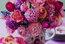 Kleur & Fleur