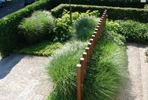 Grass / Злаки