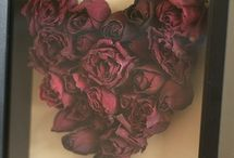 Died Roses