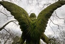 On The Wings of Angels / by Lynita Stuart-Doig