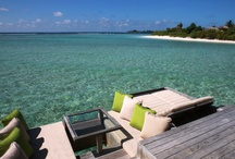 Luxury Resorts of Maldives / Maldives luxury resorts. Food & drinks. spa & wellness. Design. Honeymoons & weddings. Detail oriented. WOW factors. Dream Holiday places.
