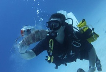 dive clean up
