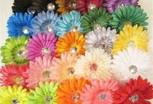 Colors I Love / by DeAnn Zimmerman Huett