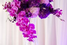 Timorie + Michael | Inspiration / 2014 Pantone Color - Radiant Orchid + Phaleonopsis orchids were the inspiration for our Wheeling, WV wedding - it is classic yet modern