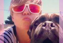 Karmi my boxer dog / My dog !