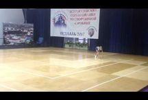 видео гимнастика
