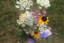flowers / les fleures est trop jolie