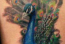 Tattoos de pavões