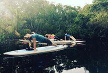 Paddle Board Yoga Naples Florida