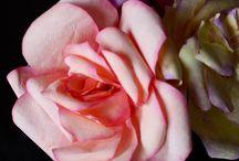 Květy (ručně vyráběné)