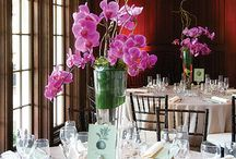 Inspiration with Phalaenopsis