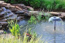 Garden {Ponds} / Ponds that make a garden landscape come alive. / by Bren Haas