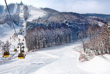 Snowboarding In Korea