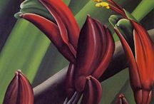 NZ Flora and Fauna (NATURE) in ART