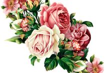 цветы-картинки