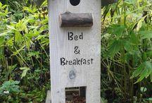 Vogels voeren / Vogelhuisjes en voederplekken voor vogels