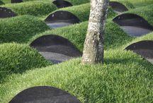 park miejski - zieleń
