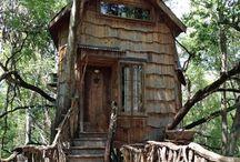 casa tra gli alberi