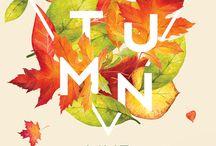 newsletter autumn