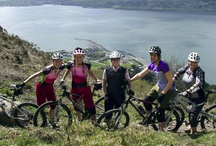 The Belles / Female Cycling & Multisport Team... Taryn McCoy, Andrea Harrower, Julie Mc Corry and Cathy Booth  Visit their Facebook Page here https://www.facebook.com/pages/The-Belles/131063740381661?fref=ts