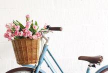 Bicycles ♥´¯`•.¸.ʚįɞ