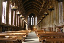 Study / Our favorite places to study on campus.